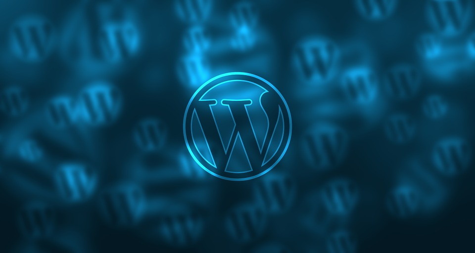 wordpress cms laten testen